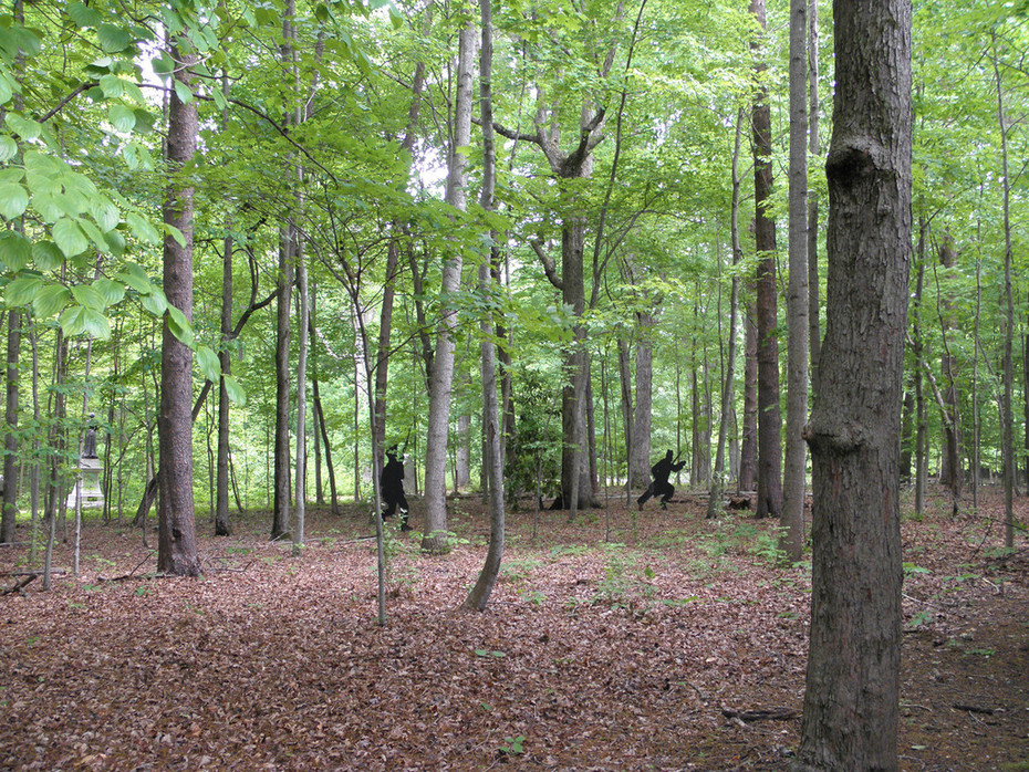Guilford Courthouse National Military Park - Woods Near Visitors Center 03 05-10-2014