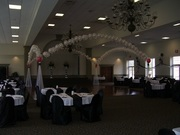 Completed Wedding Dance Canopy