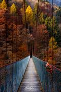 Un ponte verso l'Autunno