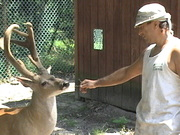 Just with a deer friend of mine