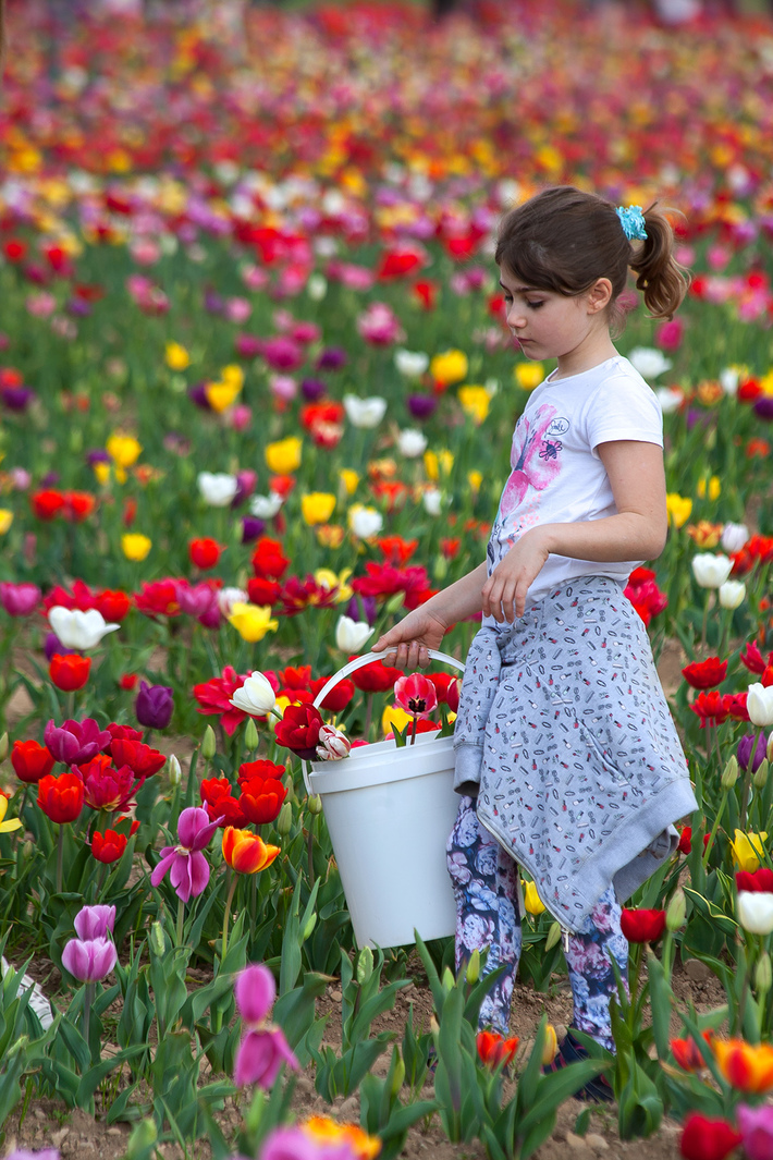 """""""Un fiore tra i fiori"""""""