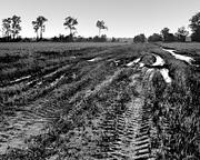 Tracks and Ruts