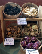 Root Veggies at the Somerville Winter Farmers Market