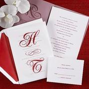 Sheer Love Wedding Invitation