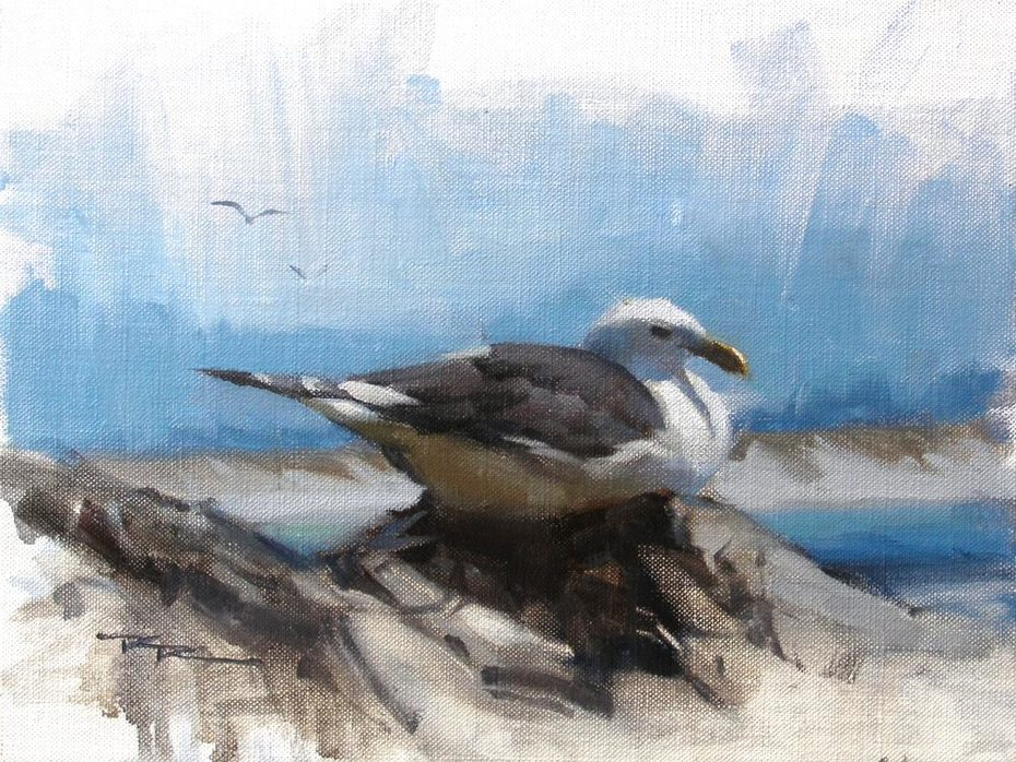 """Seagull - 8x10"""" SOLD"""