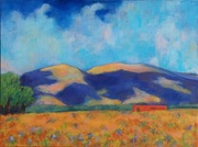 New Mexico Mountain 8x10in