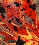 Fireworld by Mark Brumfield  (2)