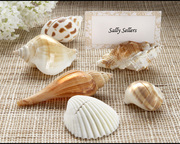 """""""Shells by the Sea""""  Place Card Holder"""