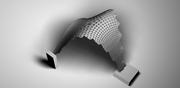 millipede: shell analysis and principal stress pattern