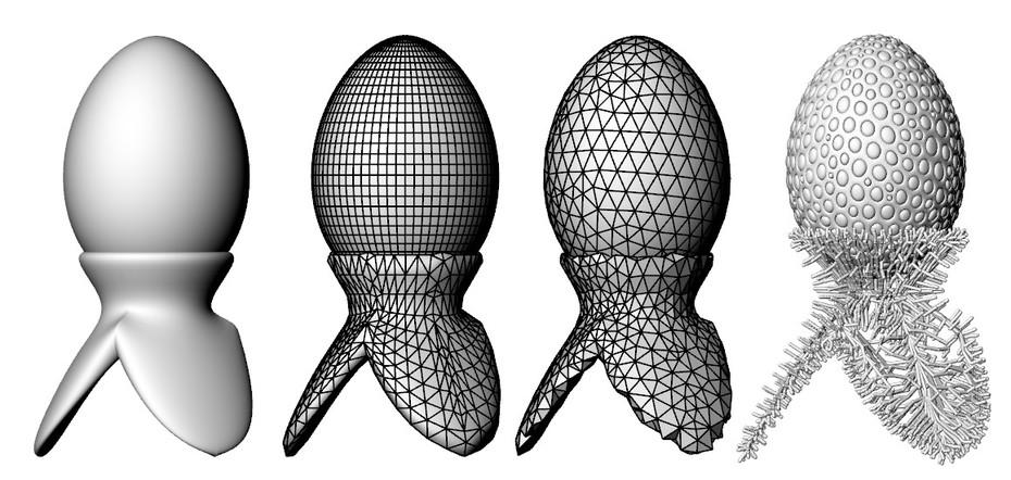 egg transformation