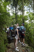 Enchanted Island Eco Tours, Guided Eco Tours In Puerto Rico!