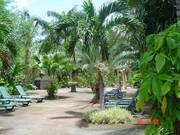 Pool site (5)