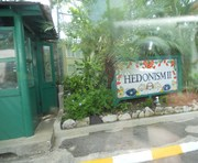 My Annual Group Trip Adventure @ Hedonism II resort in Negril, Jamaica every June since 2005