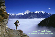 logo of Nepal Travel Experts