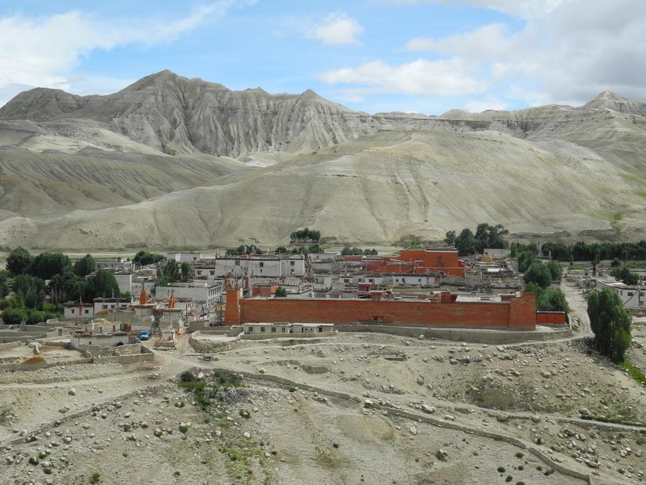 Mustang Palace