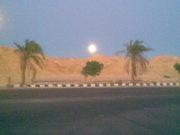 South Sinai Road