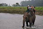 Chitwa-Jungle Safari in Nepal