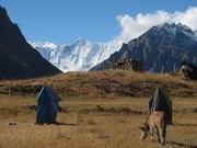 TREKKING IN NEPAL WITH SPLENDID HOLIDAYS