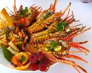 AnguillaCrayfish