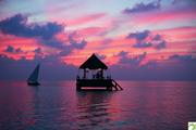 Romantic-Dining-Ocean-Pavillion-Taj-Exotica-Maldives
