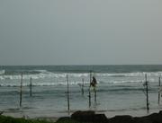 Fisherman on stilt