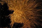 Firework display in Hanoi