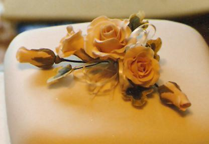 Spray of Roses