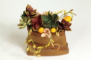 Gumpaste succulents