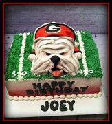 Georgia Bulldog Birthday Cake