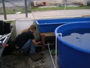 650 gallon setup