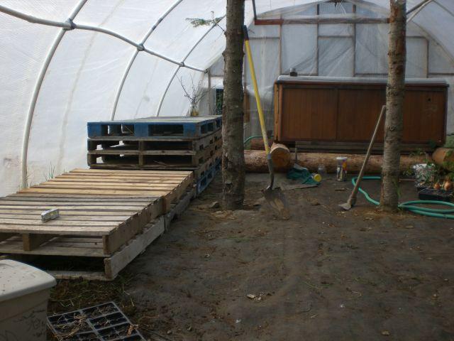 new bed platforms