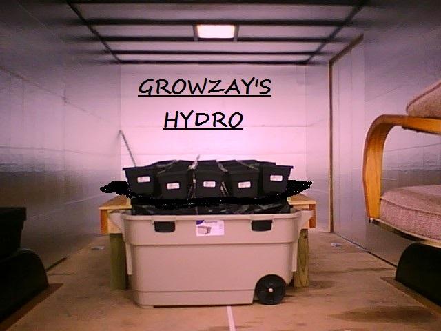 Growzay's trailor table 1