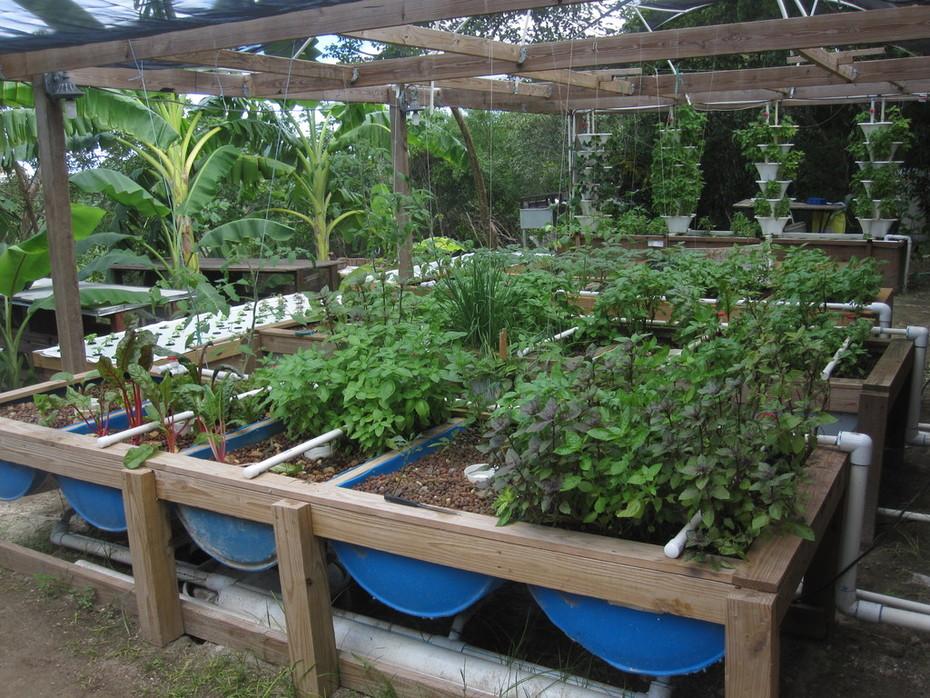 Backyard experimental unit