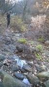 Creak 001 in dry season