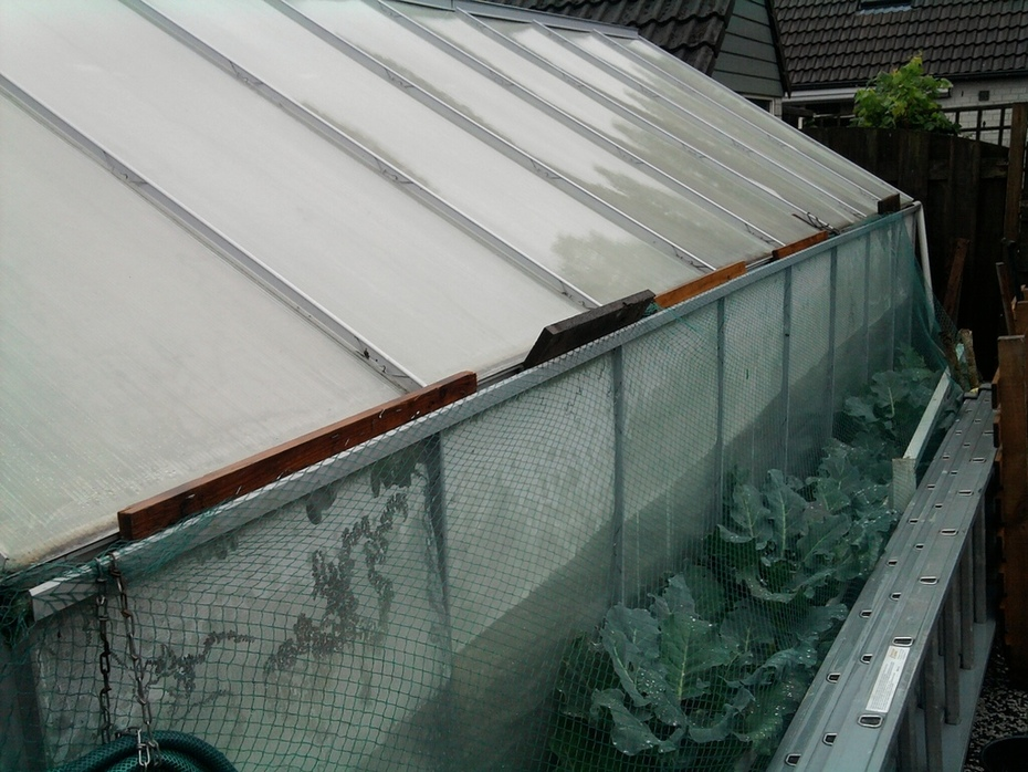 Experimental greenhouse outside picture