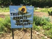 TreeStreetsGarden