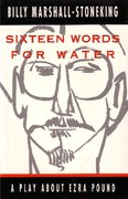 SIXTEEN WORDS FOR WATER