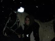 more horses 009