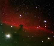 Horse Head Nebula, IC 434---Full Size!!!