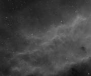 California Nebula Ha
