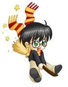Harry Potter Luvas!