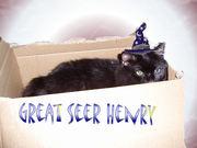 GS HENRY
