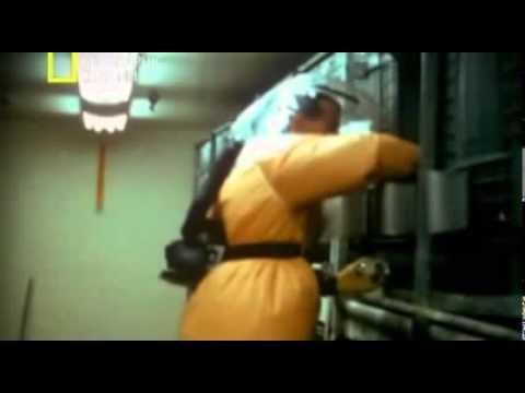 adn-dna.net 0369 Asesinos microscópicos, el virus del Ébola