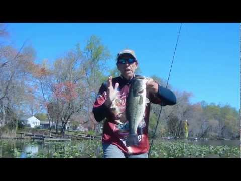 EARLY SPRING SWIM JIG TIPS FOR BIG BASS
