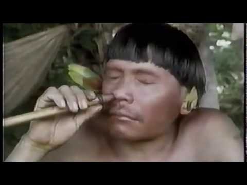 Cohoba produces exess mucus