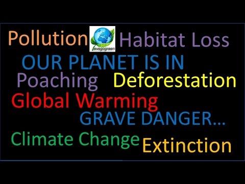 evsgogreen environmental science video channel