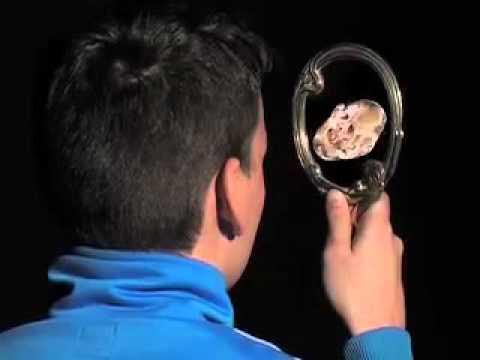 Ferris Spiegelbegegnung