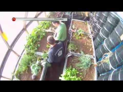 Aquapónia -- fagyban is zöldellő konyhakert - TV2 - Gönczi Péter