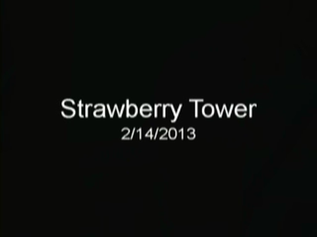 strawberrytowers