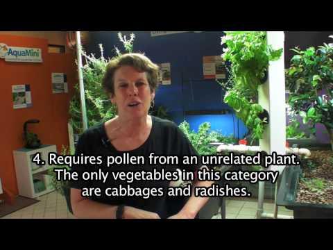 Pollination FAQ